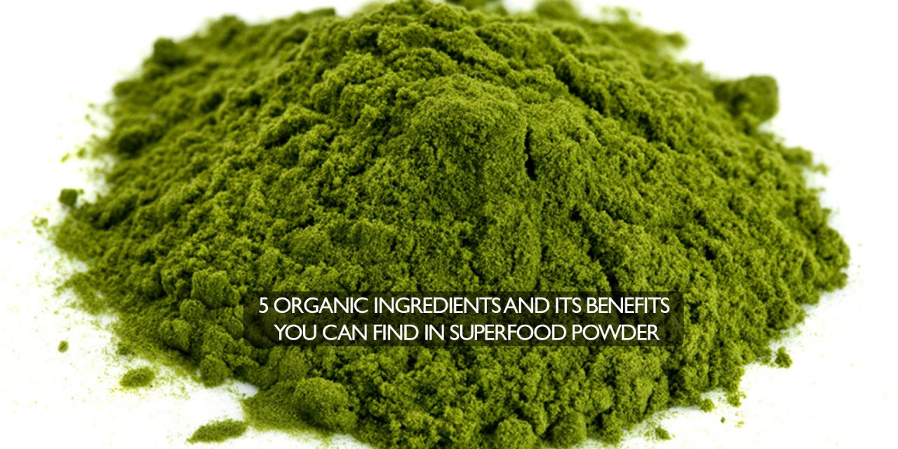 5 Organic ingredients and its benefits you can find in Superfood powder